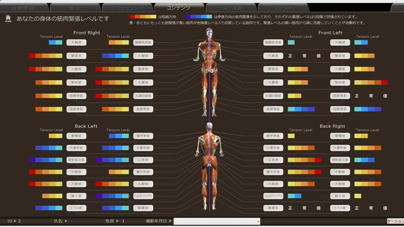 筋肉緊張を把握し、改善プログラムへ|姿勢分析システム peek a body