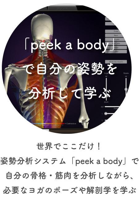 「peek a body」で自分の姿勢を分析して学ぶ|ヨガ・シャラインストラクター養成講座